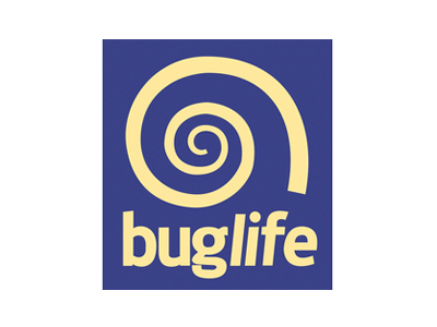Buglife charity